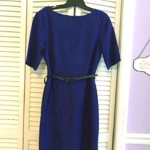 NWOT, career, Blue/Purple, short sleeve dress sz 8